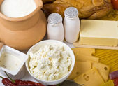 Fresh dairy products — Stock Photo