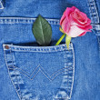Jeans pocket — Stock Photo #9719023