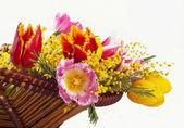 Bukett av de färska tulpanerna — Stockfoto