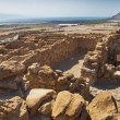Archeological site, Qumran, Israel. — Stock Photo #9872588