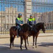 POLICE GUARDS AT THE PALACIO REAL, MADRID — Stock Photo #9646834