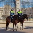 POLICE GUARDS AT THE PALACIO REAL, MADRID — Stock Photo