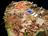 Fishes in market — Stock Photo