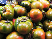 Red and green tomatoes — Stockfoto