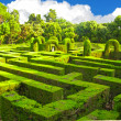 English labyrinth - Stock Photo