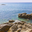 Beautiful seshore and rocks in CostBrav(Spain) — Foto Stock #9884946