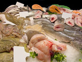 Fishes in market — Stockfoto