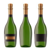Bottle of champagne — Stock Vector