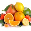 Set of citrus fruit with leaves — Stock Photo