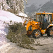 Foto Stock: Clearing roads of snow and fallen tree