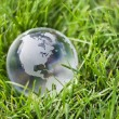Royalty-Free Stock Photo: Glass globe in green grass