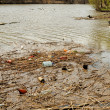 The littered river bank — Stock Photo