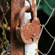 Rusty hinged lock — Stock Photo #8063265