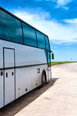 The bus on a roadside — Stock Photo