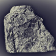 Stockfoto: Ancient fossil