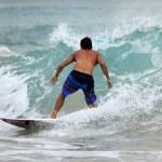 ������, ������: Surfer in ocean