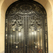 Carved metal door — Stock Photo #8253378