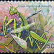 AUSTRALIA - CIRCA 2003: stamp printed in Australia, shows green mantid and damselfly, circa 2003 - Lizenzfreies Foto