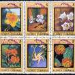 CUBA - CIRCA 1983: Stamps printed in Cuba dedicated to Cuban flowers, circa 1983 — Stock Photo