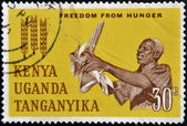 KENYA UGANDA TANGANYIKA - CIRCA 1963: A British stamp printed in Kenya, Uganda and Tanganyika (now Tanzania) dedicated to freedom from hunger, circa 1963 — Stock Photo