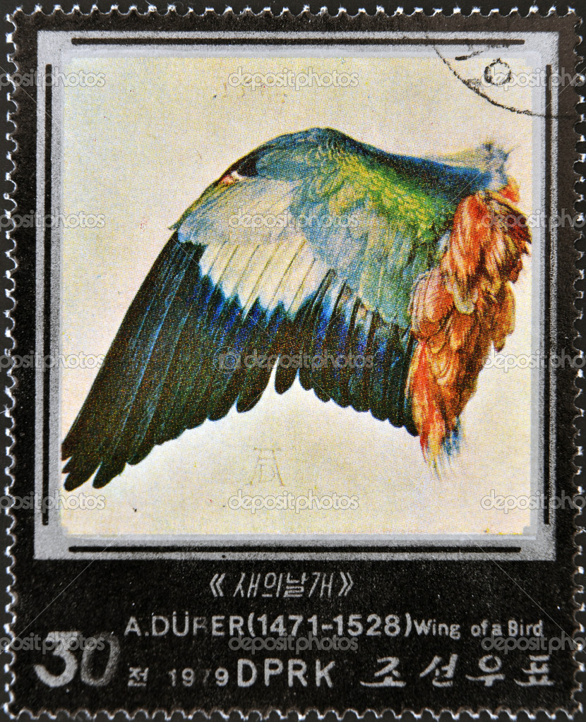 NORTK KOREA - CIRCA 1979: A stamp printed in North Korea shows wing of a bird by Albrecht Dürer, circa 1979 — Stock Photo #10209053