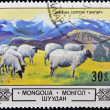 MONGOLIA - CIRCA 1982: A stamp printed in Mongolia shows a flock of sheep, circa 1982 - Foto de Stock