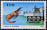 MEXICO - CIRCA 1997: A stamp printed in Mexico shows strength and shrimp associated with the state and city of Campeche, Mexico, circa 1997 — Stock Photo