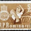 "Stock Photo: ROMANI- CIRC1963: stamp printed in Romanishows agricultural worker with inscription ""FAO - Global campaign against hunger"", circ1963"