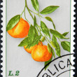 Stock Photo: SAN MARINO - CIRC1985: stamp printed in SMarino shows branch with oranges, circ1985