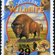 UNITED STATES OF AMERICA - CIRCA 1994: Stamp printed in USA shows Western Wildlife in the American Old West, circa 1994 — Stock Photo