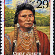 UNITED STATES OF AMERICA - CIRCA 1994 : Stamp printed in USA shows Chief Joseph, humanitarian and peacemaker in old West, circa 1994 — Stock Photo