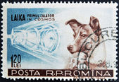 ROMANIA - CIRCA 1957: stamp printed in Romania show Sputnik 2 and Laika, circa 1957. — Stock fotografie