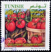 TUNISIA - CIRCA 2010: A stamp printed in Tunisia shows tomatoes, circa 2010 — Stock Photo