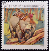 VIETNAM - CIRCA 1973: A stamp printed in Vietnam shows man on elephant outside, Circa 1973 — Stock Photo