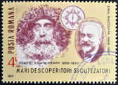 ROMANIA - CIRCA 1985: A stamp printed in Romania shows Robert Edwin Peary and Emil Racovita, circa 1985 — Stock Photo