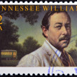UNITED STATES OF AMERICA - CIRCA 1995: A stamp printed in USA shows Tennessee Williams, circa 1995 — Foto Stock