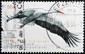 GERMANY - CIRCA 2004: A stamp printed in Germnay shows a white stork, circa 2004 — Stok fotoğraf