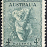 Stamp printed by Australia, shows koala — Stock Photo