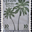 Stock Photo: Stamp printed in Ceylon shows coconut tree