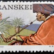 REPUBLIC OF SOUTH AFRICA - CIRCA 1976: A stamp printed in Transkei shows transkei matron, circa 1976 - Stock Photo