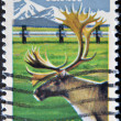 UNITED STATES - CIRCA 1983: stamp printed in USA, shows Caribou and Alaska — Lizenzfreies Foto