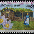 State Flower, Pioneer Woman and Sod House on Grasslands — Stock Photo