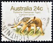 """Australien - circa 1981: eine briefmarke gedruckt in australien zeigt das bild einen beutelwolf (tasmanischer tiger) mit der beschreibung """"endangered species"""", ca. 1981 — Stockfoto"""