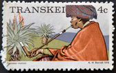 REPUBLIC OF SOUTH AFRICA - CIRCA 1976: A stamp printed in Transkei shows transkei matron, circa 1976 — Stock Photo