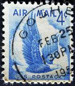 águia americana em vôo — Fotografia Stock