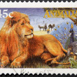 AUSTRALIA - 1996: A stamp printed in Australia shows image of a male lion, circa 1996 - Stock Photo