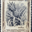 Stock Photo: COSTA RICA - CIRCA 1950: A stamp printed in Costa Rica dedicated to agricultural fair, livestock and industrial Carthage, shows a pineapple, circa 1950