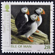 ISLE OF MAN - CIRCA 2006: A stamp printed in isle of man shows puffin, fratercula arctica, circa 2006 — Stock Photo