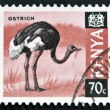 KENYA - CIRCA 1969: A stamp printed in Kenya shows an ostrich, circa 1969 — Stock Photo #9444500