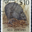 NEW ZEALAND - CIRCA 1988: A stamp printed in New Zealand shows little spotted Kiwi, Apteryx australis, circa 1988 — Photo